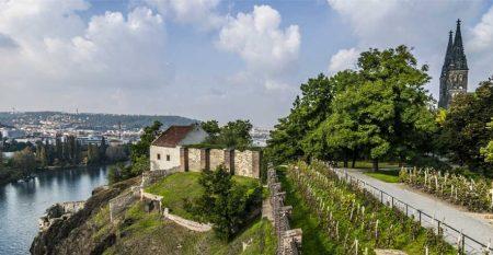 vysehrad-pohled-hradby-bazilika