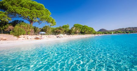 Santa Gulia sandy beach with pine trees and azure clear water, Corsica, France, Europe